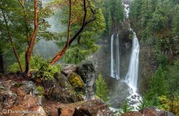 Barr Creek Falls Sue Newman