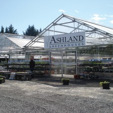 greenhouses_13