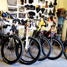 ashland_electric_bikes_2