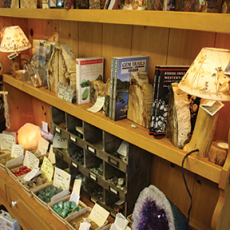 Nature_Shop_6