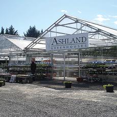 Ashland Greenhouses5