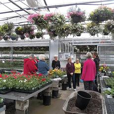 Ashland Greenhouses6