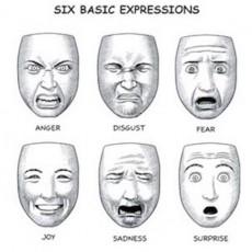 sixbasicexpressions_302