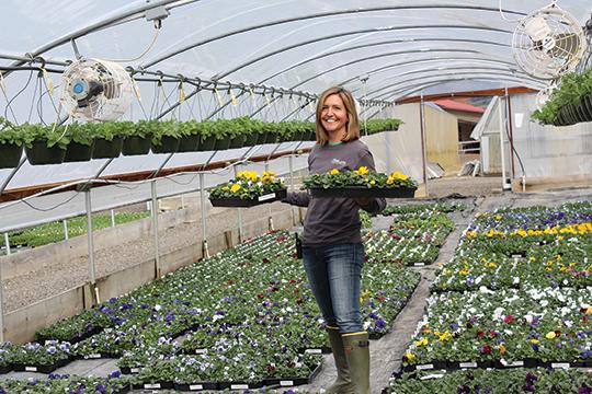 Photo of Ashland Greenhouses