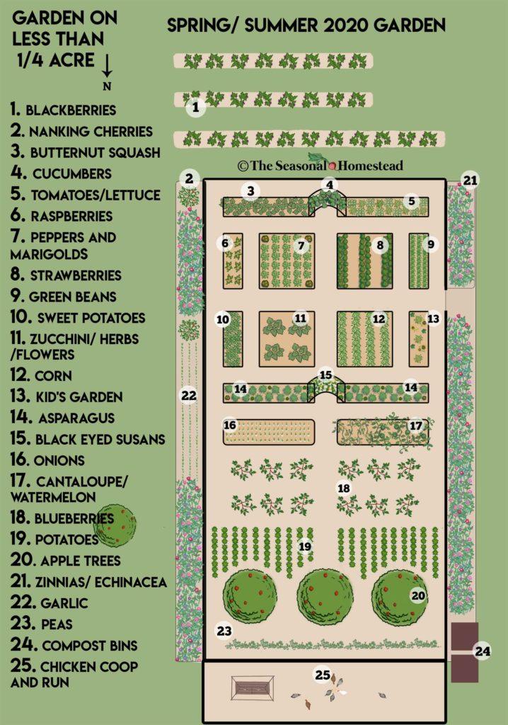 Photo of Quarter-Acre Garden Plans 2020