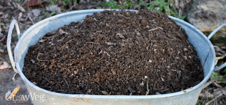 Photo of Hot Composting Made Simple