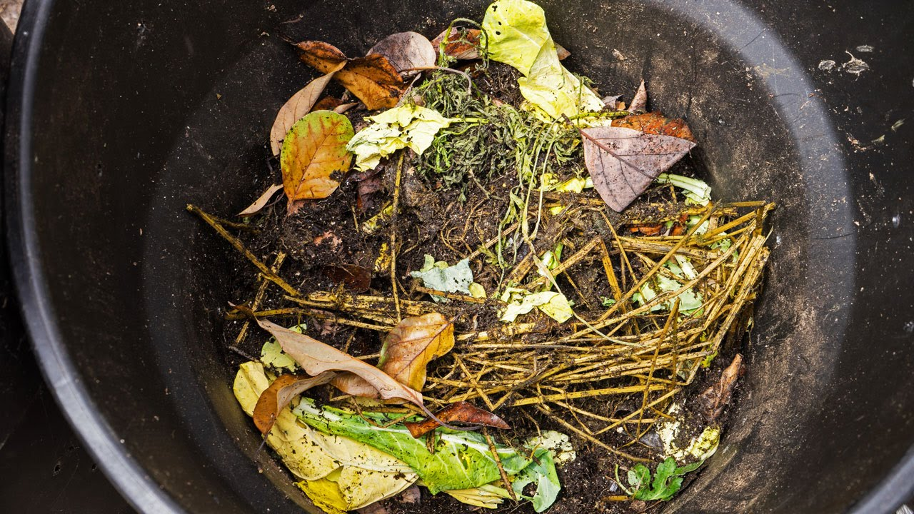 Photo of Composting – How To Make Your Own Compost At Home
