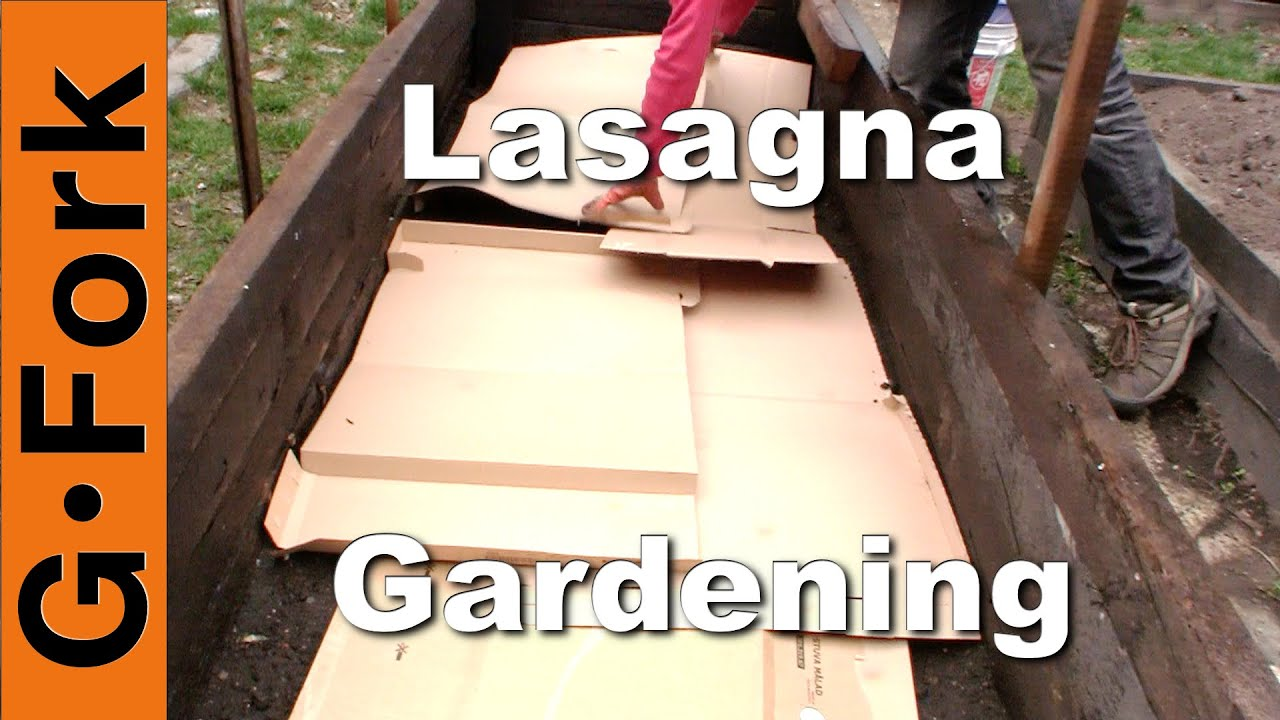 Photo of Lasagna Gardening How To – GardenFork